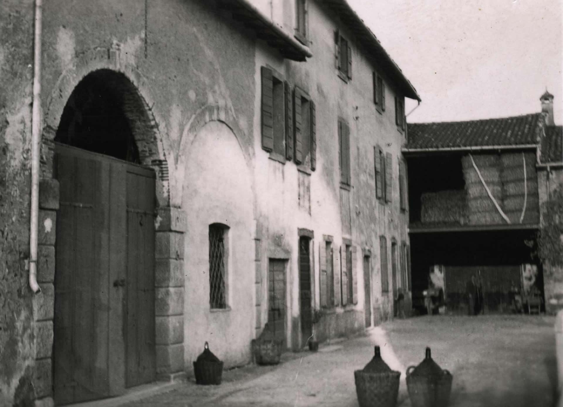 Grundlæggelsen af vingården